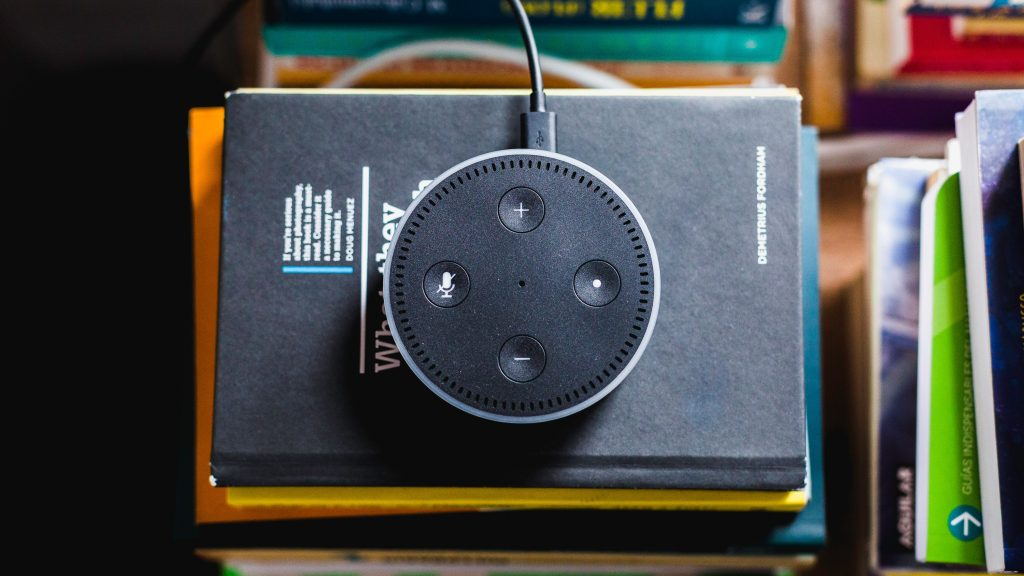 voicebot smart speaker UX brands